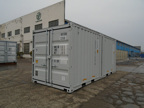 Double-Door-Seecontainer RAL 7035 - 10 Fuss